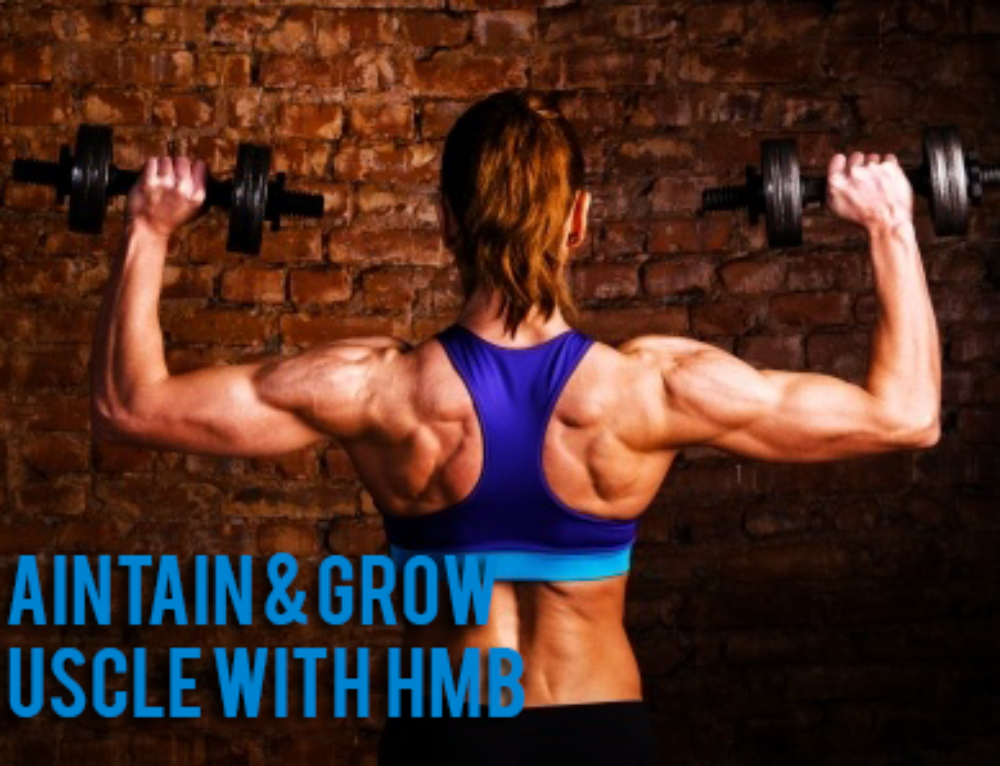 Promote Muscle Gain and Support Muscle Retention with HMB